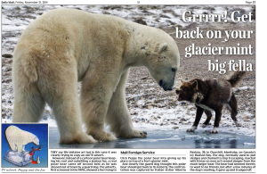 Daily Mail - Dog and Polar bear